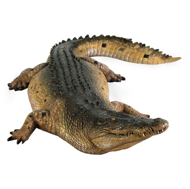 Tropical Wetlands Crocodile Sculpture