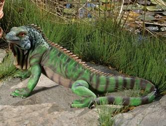 Iguana Sculpture